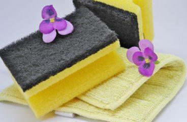Renice tilbyder en rengøringsservice ud over det sædvanlige
